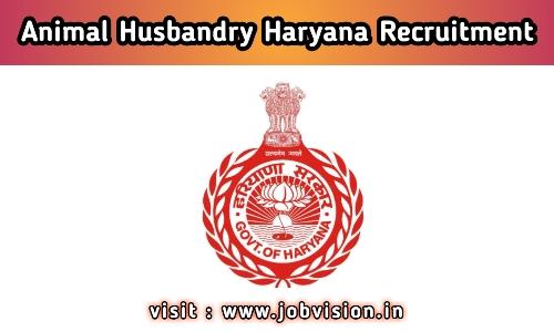 Animal Husbandry Haryana Recruitment